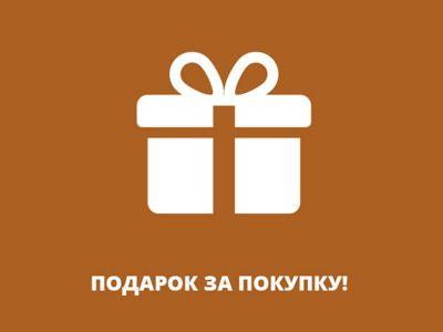 При покупке парогенератора подарок
